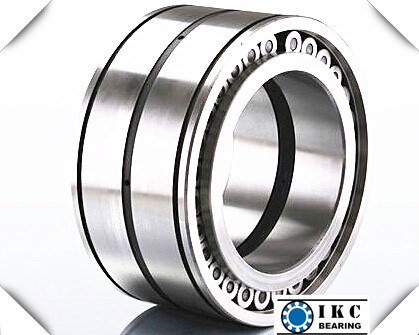 SL182226 Full Complement Roller Bearing SL182224 SL18222 SL182220 SL182218