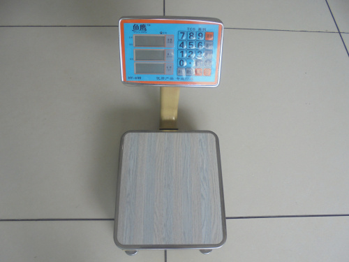 New Model Kinds of Stainless Stee Platform Scale (TCS-K-608)