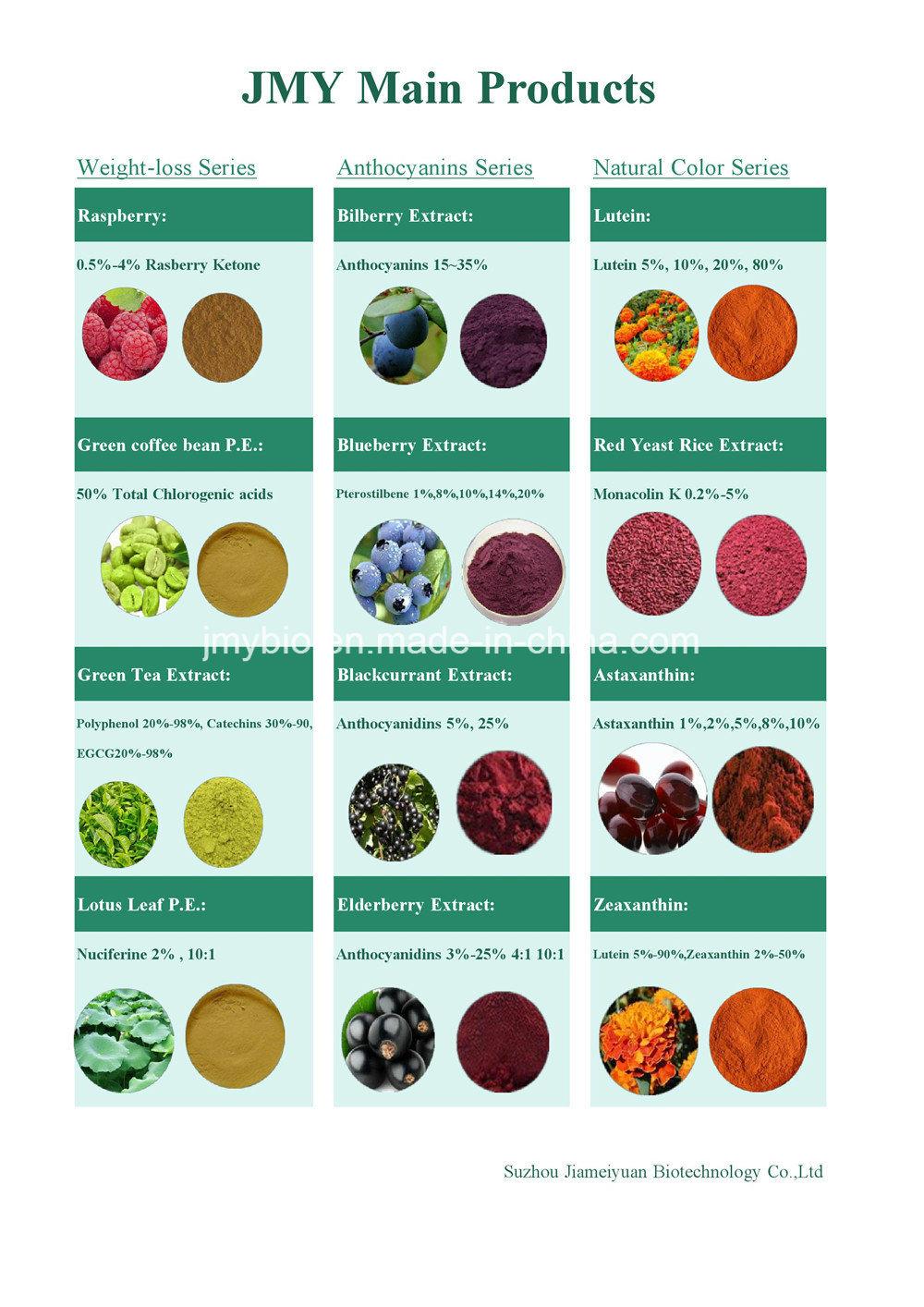 Natural Rosemary Extract, Carnosic Acid 60%, Rosmarinic Acid 98%