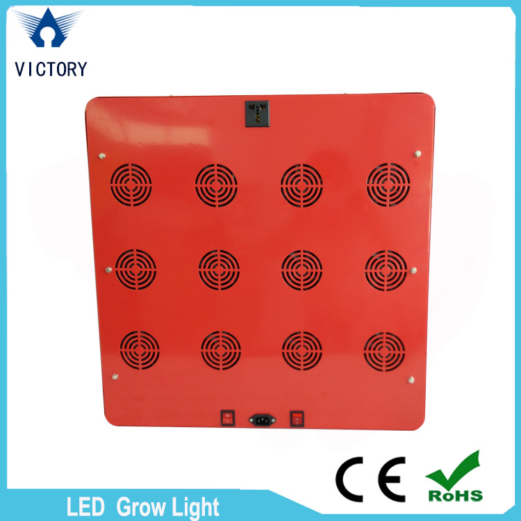 High Power 1000W Full Spectrum LED Grow Light for Greenhouse