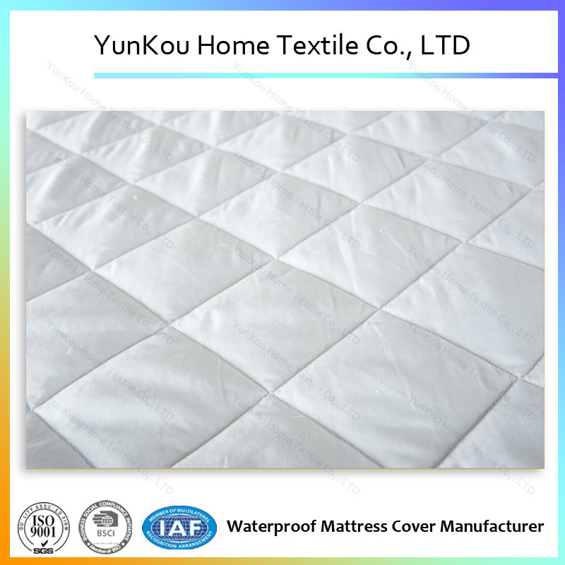 Professional Factory Made Soft Non-Skid Mattress Cover Waterproof Insulation Urine Protector
