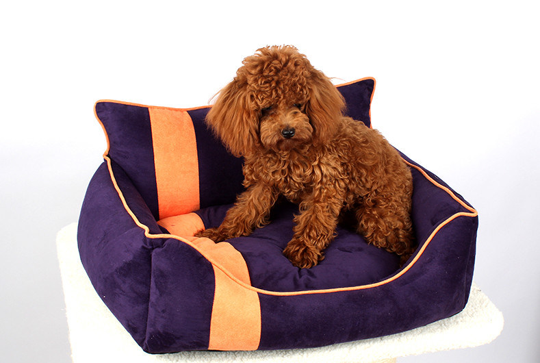Pet Products Dog Cat Puppy Fashion Bed (B014)