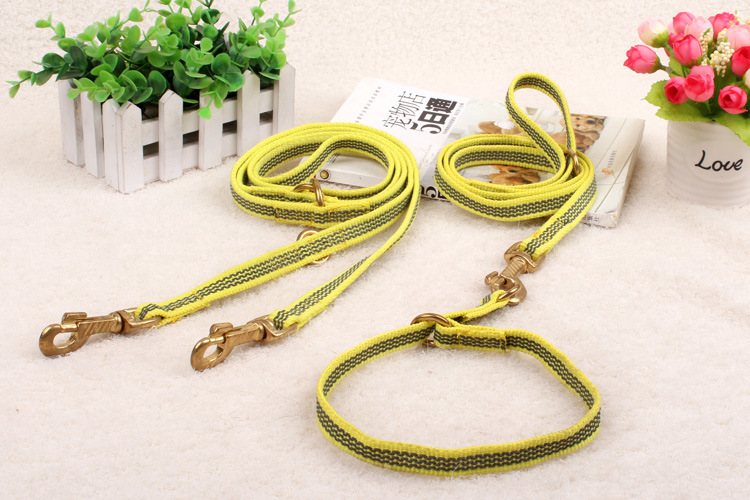 Pet Products Supply Dog Leash (L005)