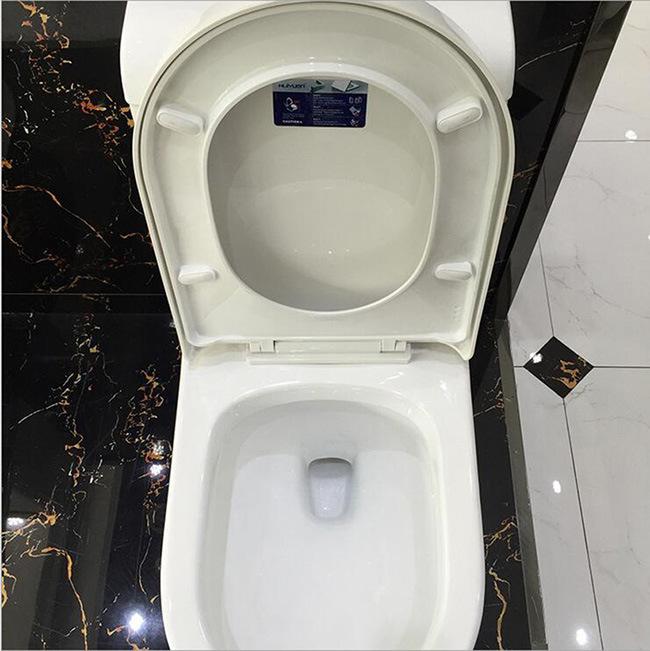 Ovs Foshan Sanitary Ware Building Materials Supplier Wc