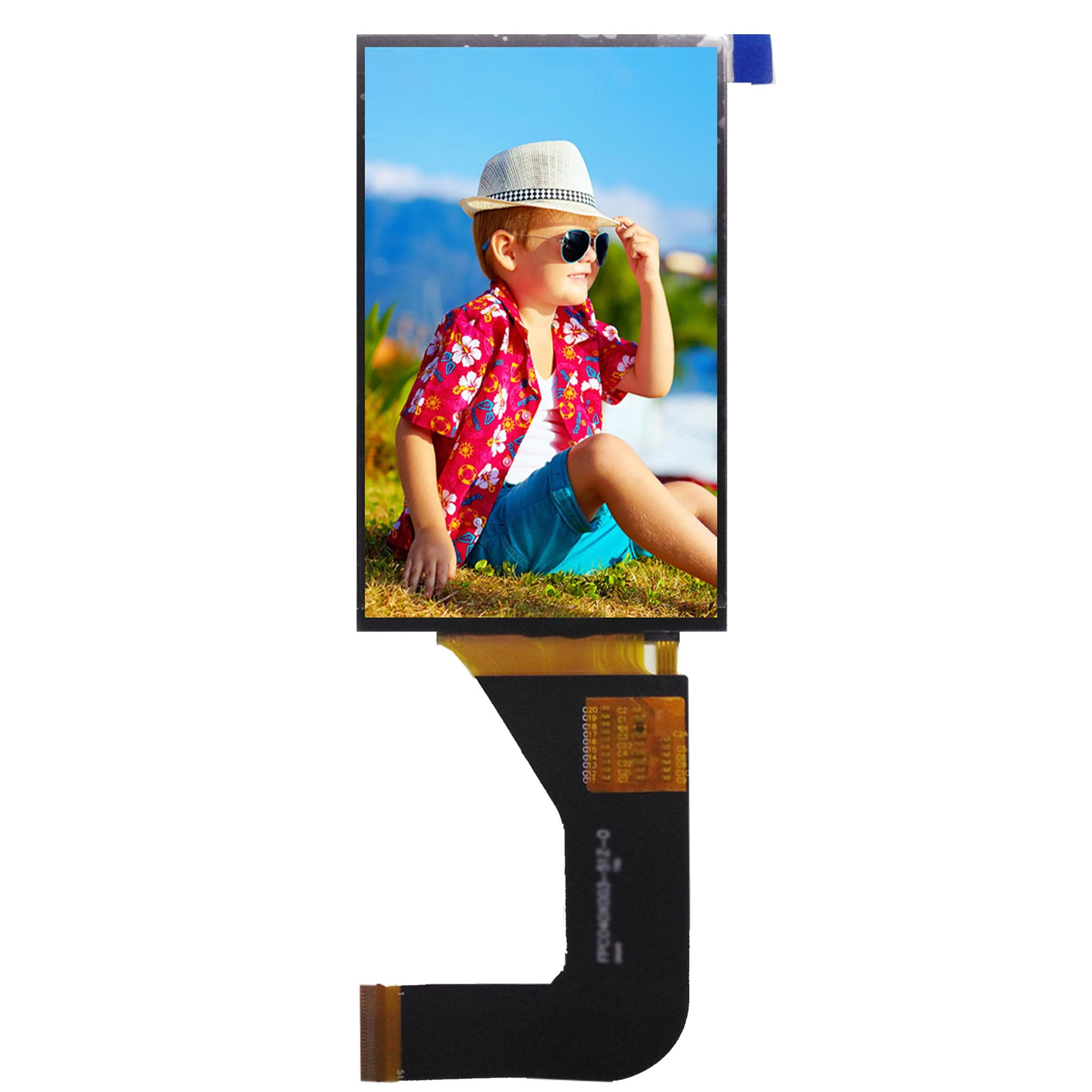 3.97 Inch Customizable Touch Screen TFT LCD Module