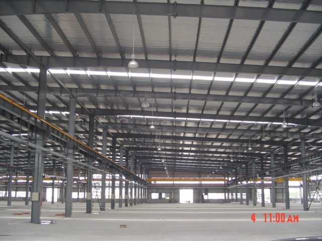 Beautiful Painted Steel Structure Factory for Poultry Shed
