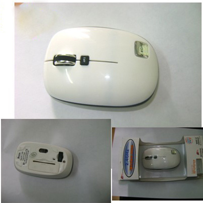 Wireless Mouse (QY-WM2416)