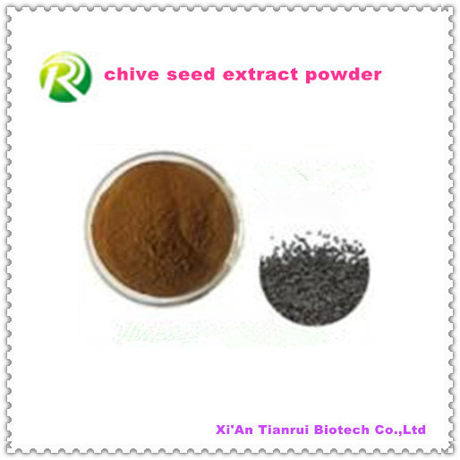 High Quality 100% Natual Chive Seed Extract Powder