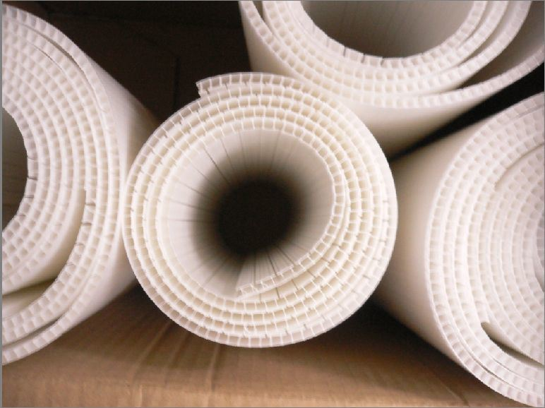 Roll-up Corrugated PP Sheet