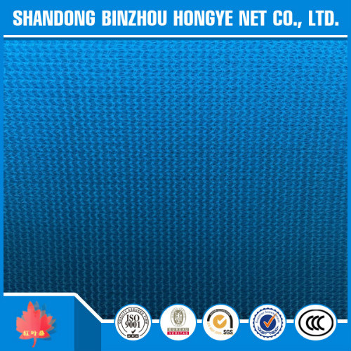 100% New HDPE Blue 180g Construction Safety Debris Net
