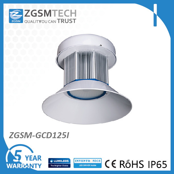 125W High Bay Lighting Fixtures