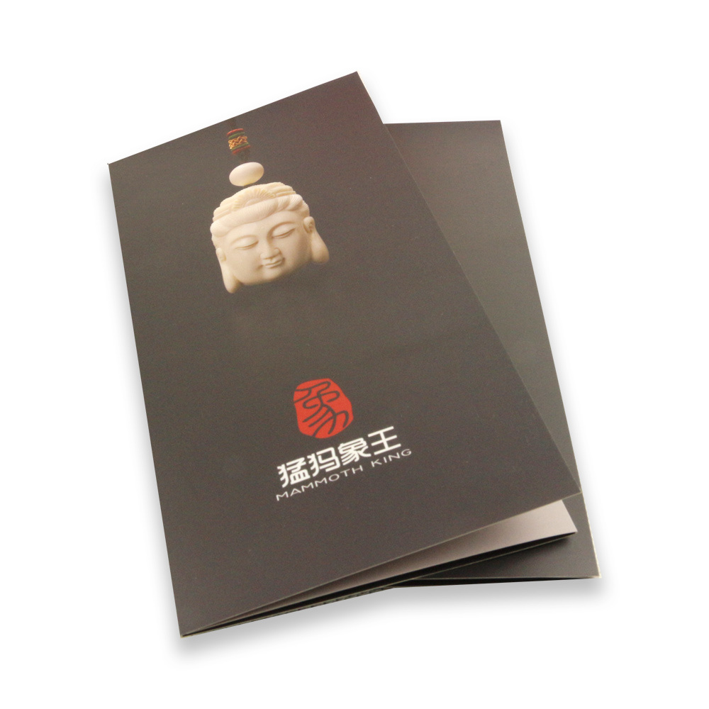 Coated Paper Film Lamination Customized Brochure Printing