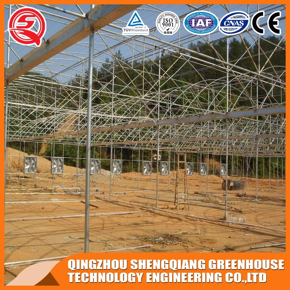 Vegetables/Garden/Flowers/Farm Film Greenhouses
