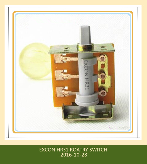 Hr31 Oven Rotary Switch with High Rating