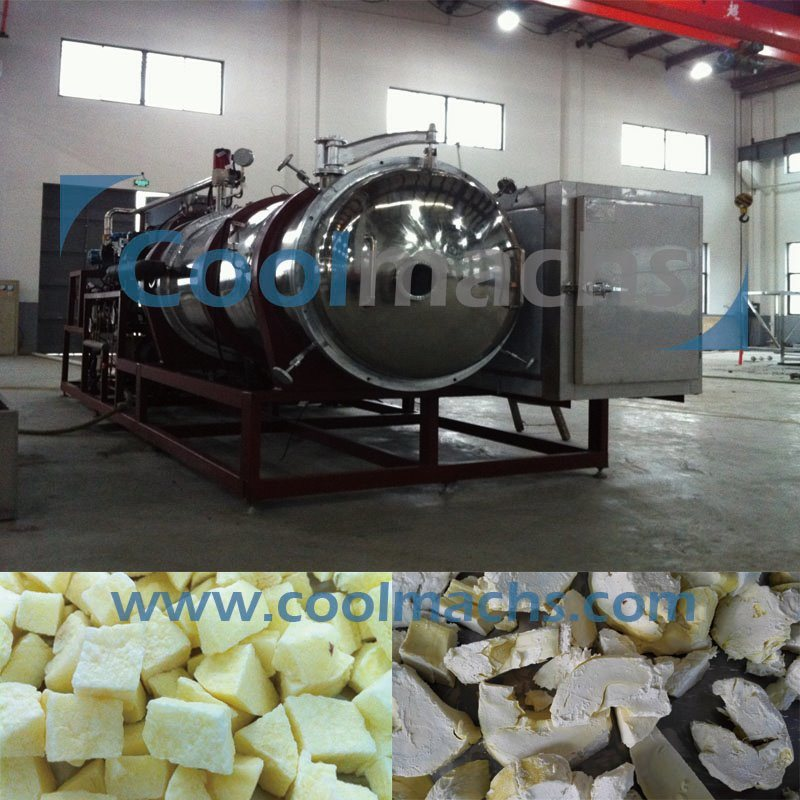 Vacuum Freezing Drying Machine/Durian Vacuum Freeze Dryer