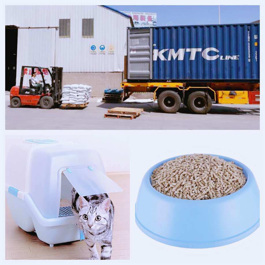 Professional Manufacturer of Cat Litter--Factory