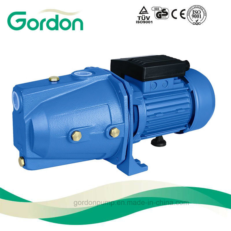 Electric Copper Wire Self-Priming Jet Pump with Stainless Steel Impeller