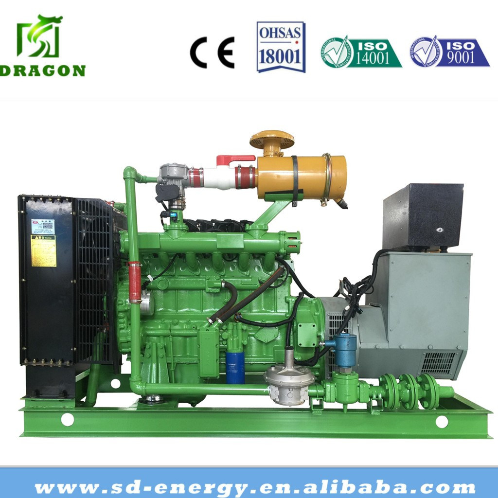 10kw-1000kw Cogeneration Equipment Biomass Gasification Power Plant