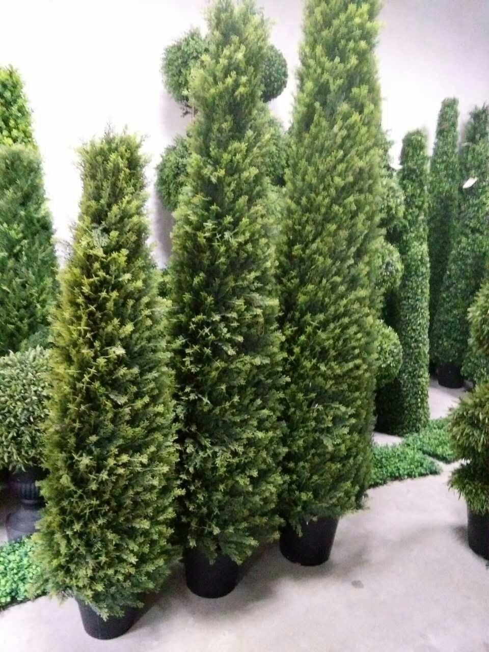 Artificial Plants and Flowers of Boxwood Tree Gu828296544