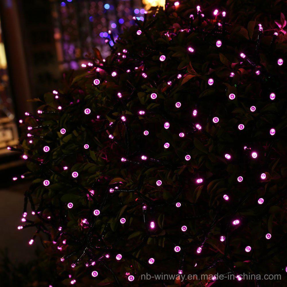 Solar Powered 100 LED Rose Red Outdoor Christmas String Light