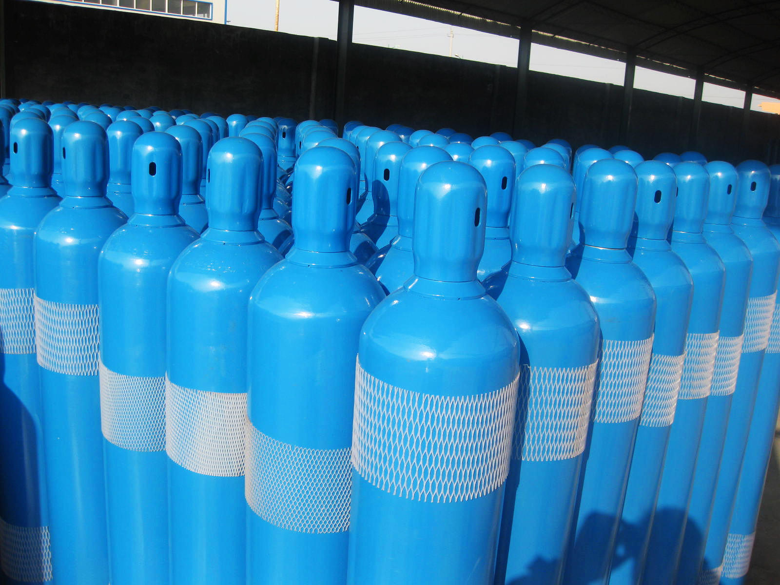 Seamless Gas Cylinder--50L