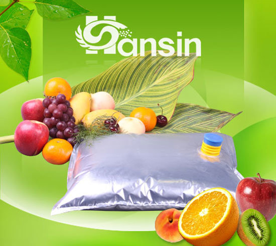 Aseptic Bag for Fruit Concentrate (HS1AAL1-220)