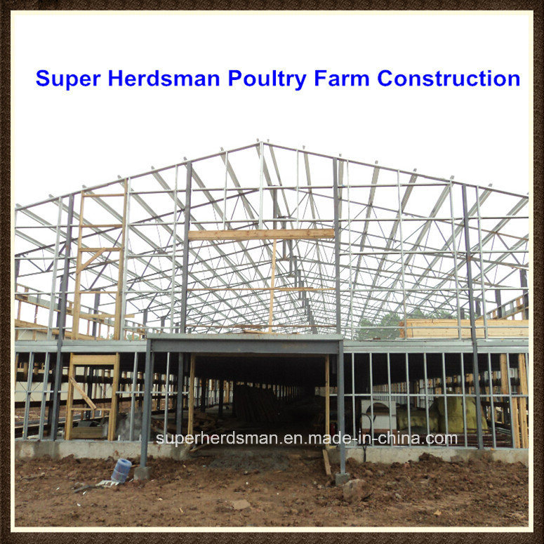 Poultry Farm Construction : China professional poultry farm construction with light