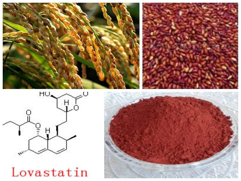 Red Yeast Rice Extract / Red Yeast Rice / Red Rice Yeast