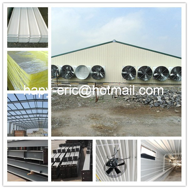 High Quality Full Set Steel Structure Poultry House