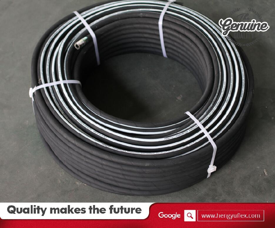 Steel Wire Braided Flexible High Pressure Washer Rubber Hose