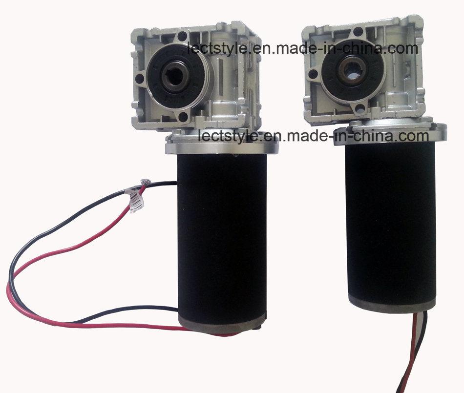 12V or 24V 50rpm 100W-350W DC Worm Gear Motor