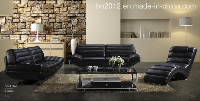 Living Room Genuine Leather Sofa (SBO-3979)