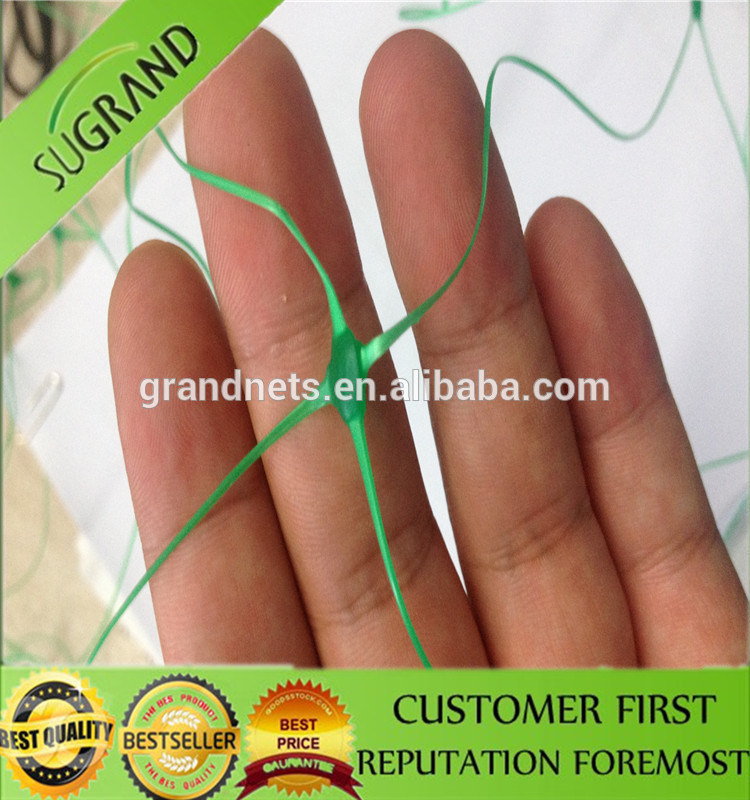 10cm Mesh Extruded Green Plant Support Net