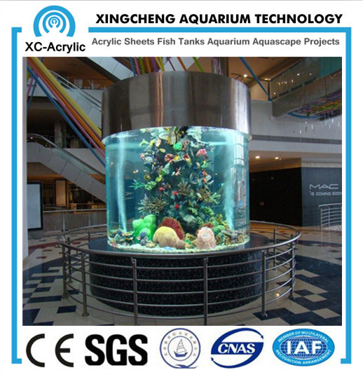 Cylindrical Acrylic Aquarium / Large Transparent Cylindrical Acrylic Aquarium by Customized for Acrylic Aquarium Project