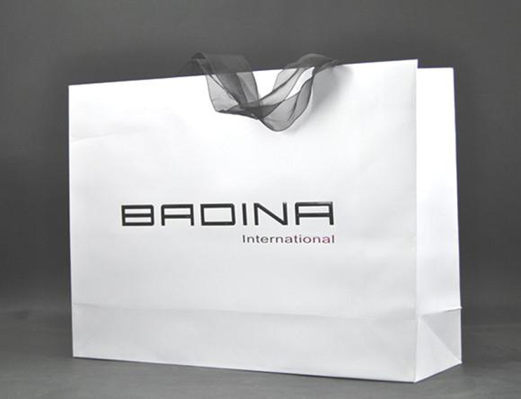 Wholesale Fashion Shopping Paper Gift Bags for Garments&Shoes (FLP-8955)