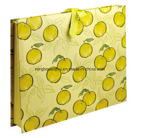 A4 Size Paper Cardboard Accordian Expanding Hard Cover File Folder