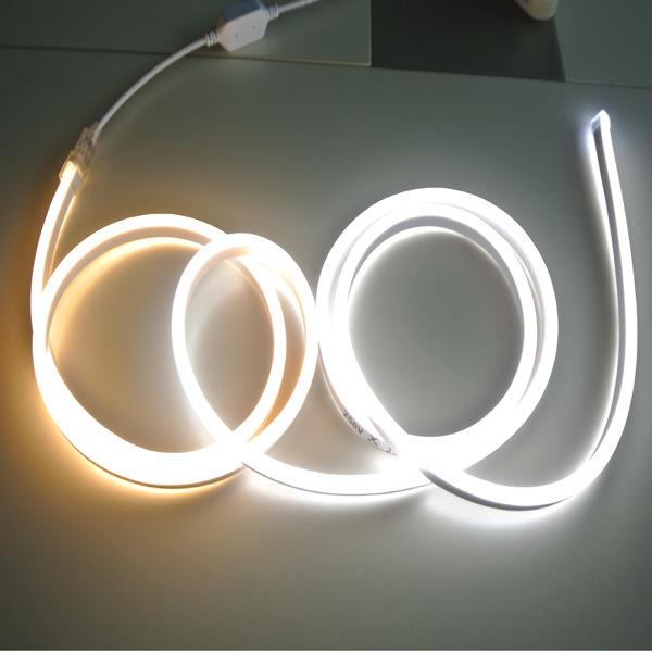 220V/110V/24V/12V SMD2835 Warm White/White RGB Flex LED Neon Sign