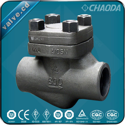 API602 Forged Steel Swing Check Valve
