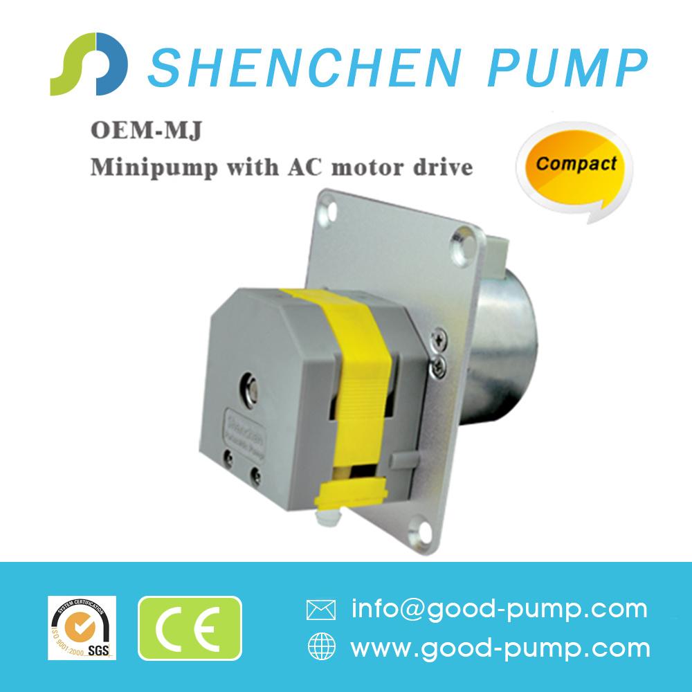 OEM-Mj 0.024-190ml/Min Mini Pump with AC Motor