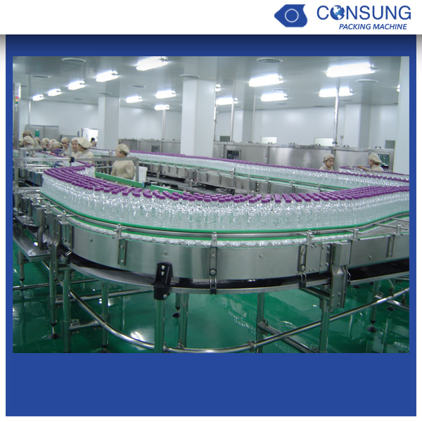 Pet Bottle Conveyor Conveying System