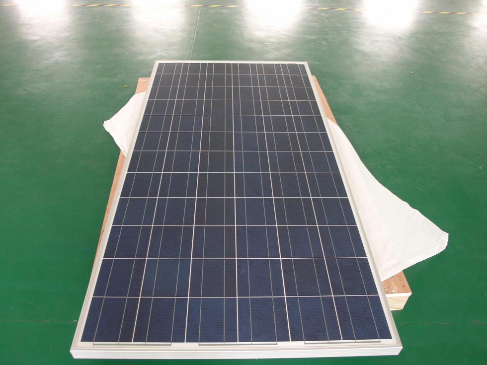 Poly Solar Panel 260W (CNSDPV-260(P))