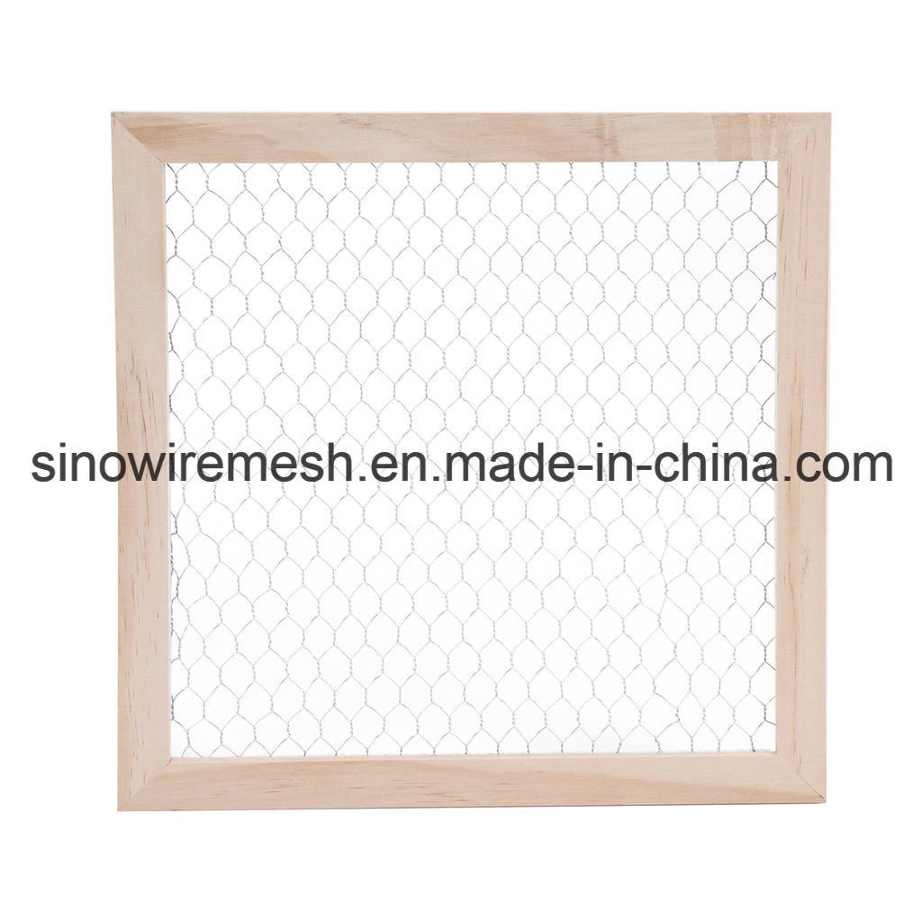 Galvanized Hexagonal Wire Netting Made in China