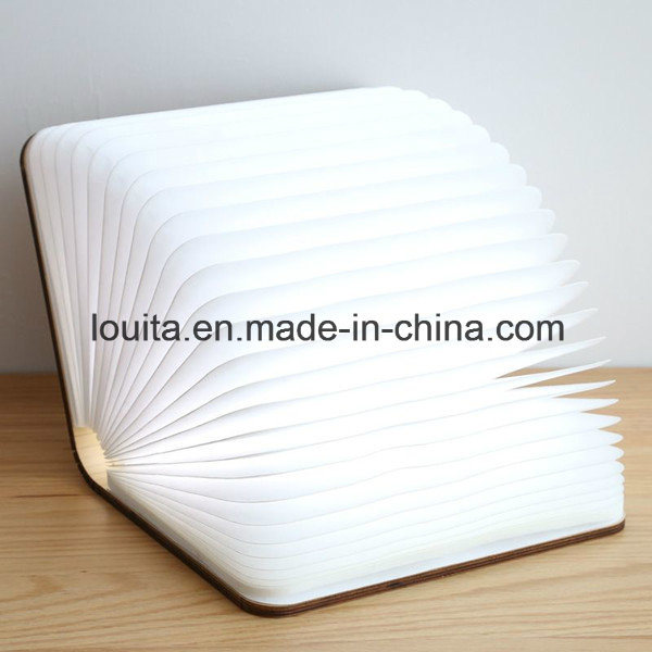 Unique Model Reading Book Light