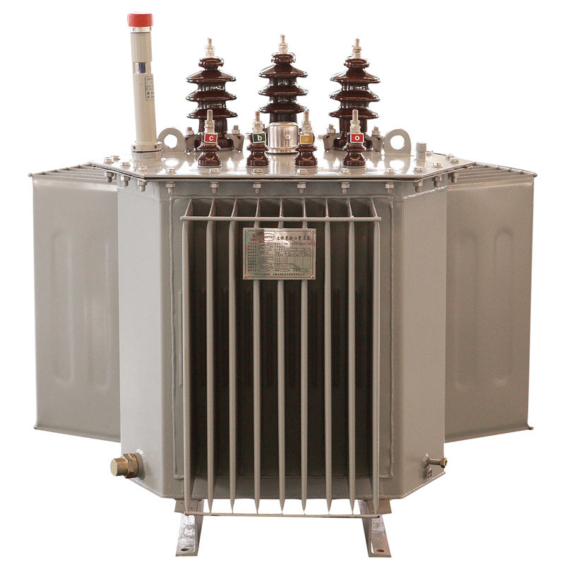 10 Kv S11 Series The Whole Sealing Oil-Immersed Distribution Transformer