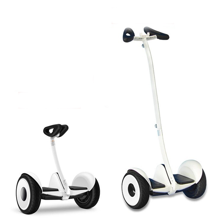 700W Elctric Self Balance Scooter with Handle Bard