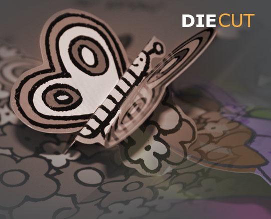 Creasing/Die Cutting Machine (ML-2000)