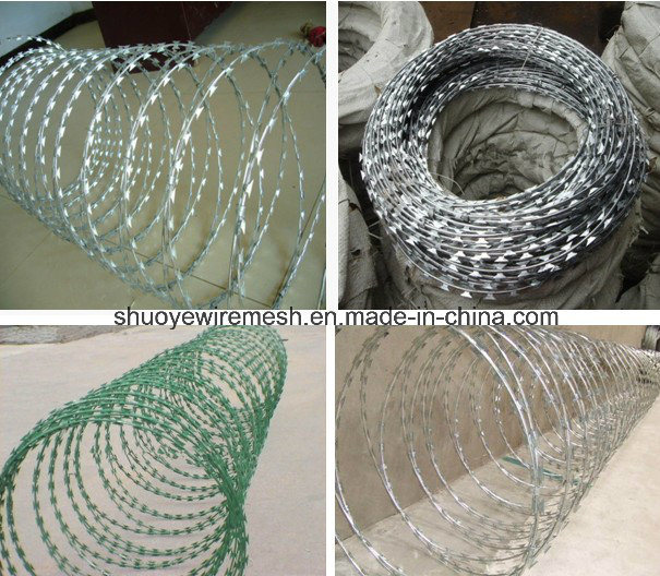 980mm Roll Diameter Galvanized Razor Barbed Wire Mesh for Fence