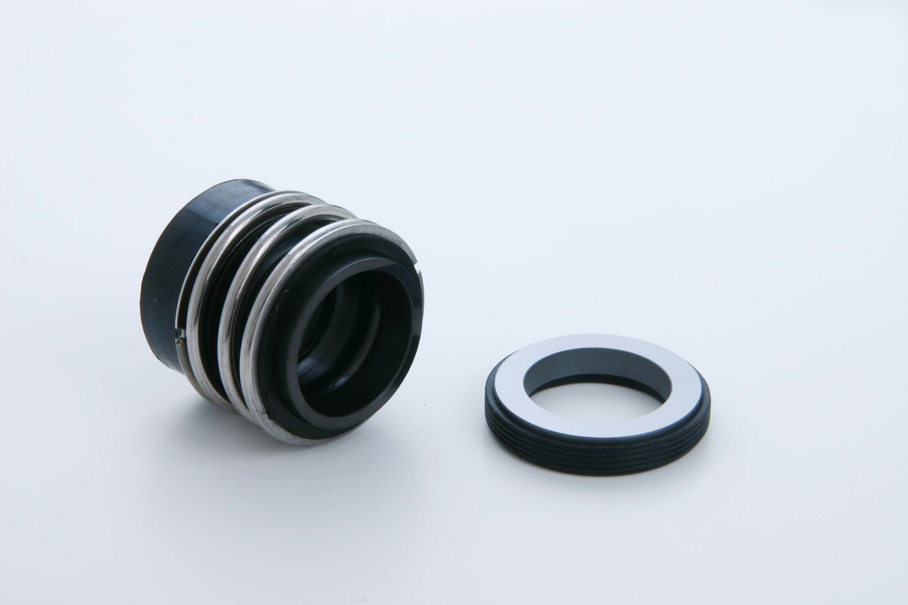 Bugmann Style Mechanical Seal