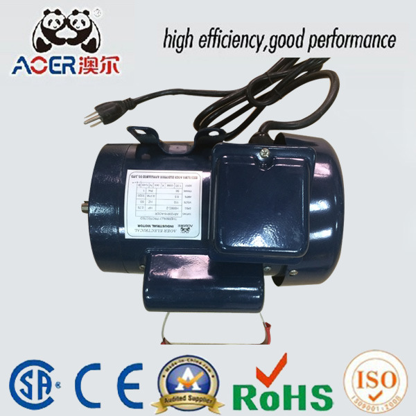 0.75HP AC Synchronous Generator Stainless Electric Motor with Plug