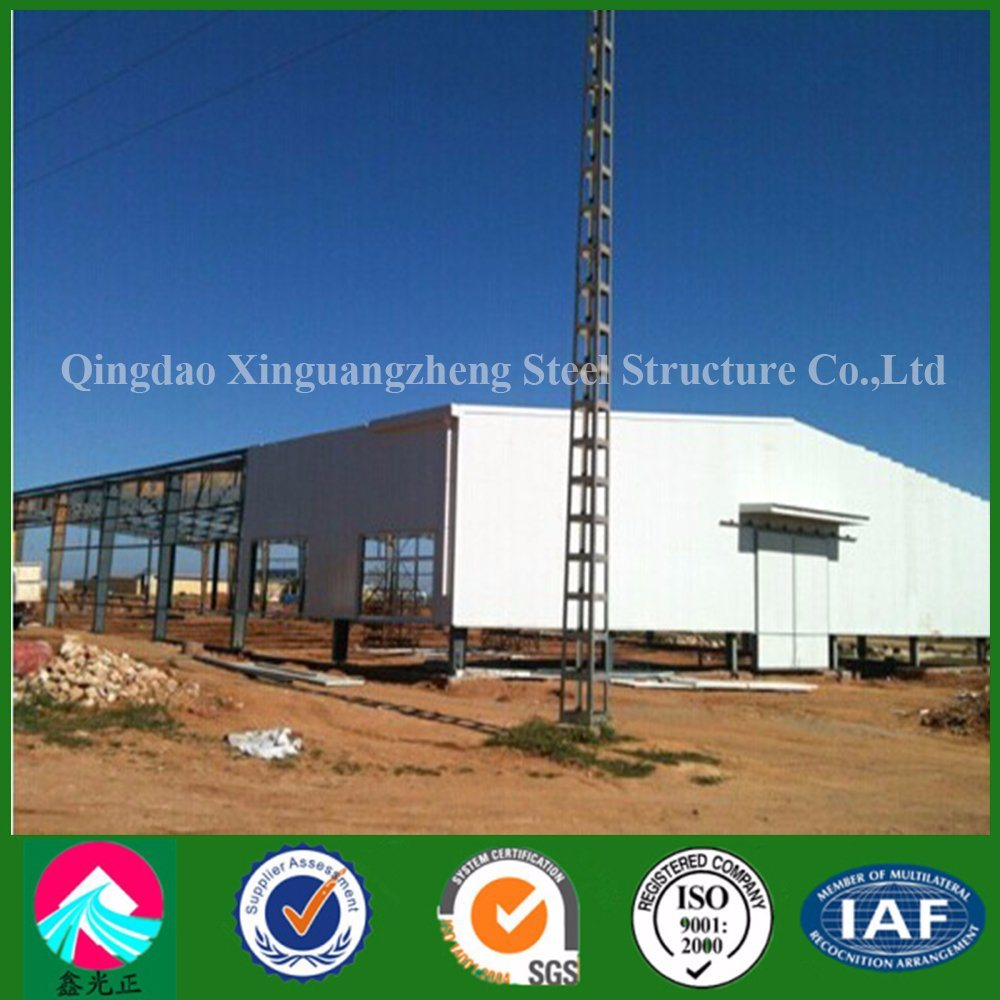 New Design Light Steel Structure for Construction (XGZ-A029)